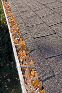 Cleaning your gutters in Indiana