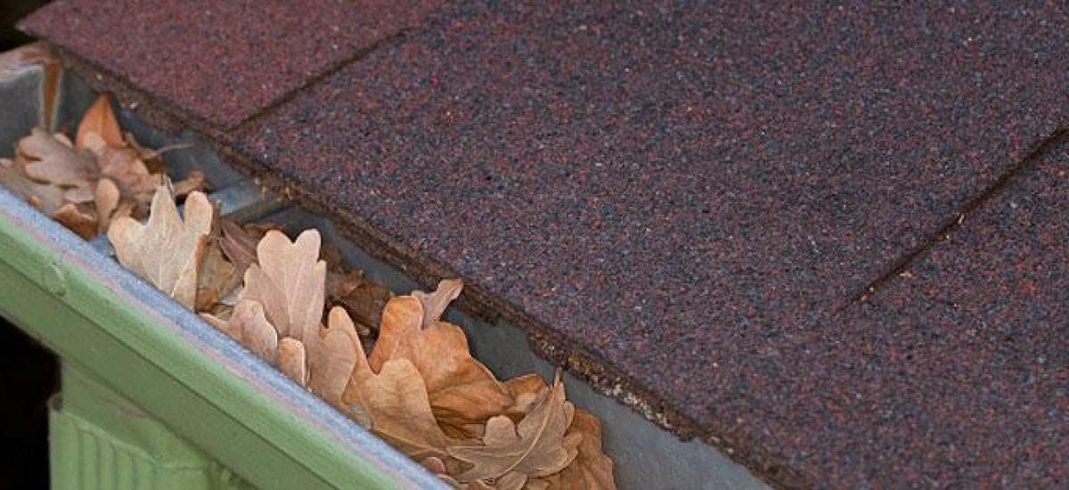 gutter problem clogged