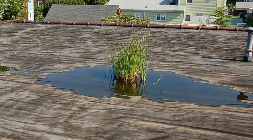 Water Leak From Roof roof leaks archives | lyons roofing